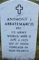 Profile photo:  Anthony J Abbatemarco