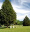 Davis-Jackson Cemetery