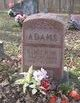 Roger Wayne Adams