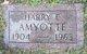 Harry E Amyotte