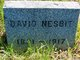 David Nesbit
