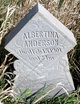 Albertina Josefina <I>Olsson</I> Anderson