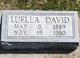 Luella <I>Brooks</I> David