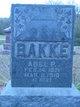 Profile photo:  Abel P. Bakke