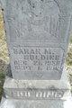 Profile photo:  Sarah M. Bolding