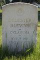 Delester Blevins
