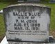 Sallie <I>Blue</I> John