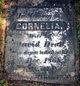 Profile photo:  Cornelia <I>Travis</I> Dean