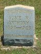 """Susan N. """"Susie"""" <I>Dottery</I> Anthony"""