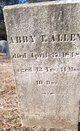 Profile photo:  Abby T. Allen