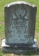James Horace Henry Pevey
