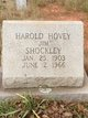 Profile photo:  Harold Hovey Shockley