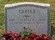 Profile photo:  Albert P Carter