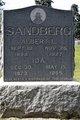 Albert L Sandberg
