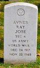 Profile photo:  Avner Ray Jobe