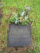 Gustaf Algot Ferdinand Dahlgren