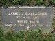James J Gallagher
