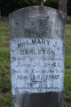 Mrs Mary Jane <I>Murff</I> Carleton
