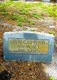 Profile photo:  David C. Griffiths