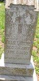 Willie Carl Bitner