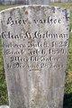 Elias Kurtz Gehman