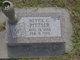 Nettie C <I>Trentham</I> Pittser