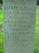 Profile photo:  Alfred H Albee
