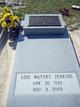 Loie <I>Waters</I> Jenkins