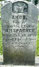 Profile photo:  Amos Amspacher