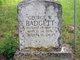 George W Badgett