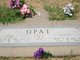 """Joseph John """"Joe"""" Opat"""