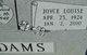 Joyce Louise <I>Nelson</I> Adams
