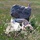 Belfield City Cemetery