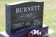 Lowell A. Burnett