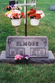 Faye <I>Waddle</I> Elmore