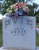 Profile photo:  James F. Awrey