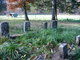 Sutherlin/Condray Cemetery