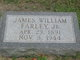 James William Farley, Jr