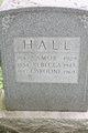 Rebecca Jane <I>Maxwell</I> Hall