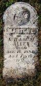 Martha L. Allen
