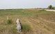 Freidrich Miller Gravesite
