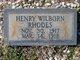 Henry Wilborn Rhodes