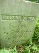 Nelson Bruce