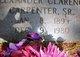Alexander Clarence Carpenter, Sr