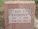 Roy L. Anthony