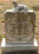 Christopher M Banister