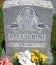 Profile photo:  William F Pellagrini