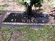 Debbora <I>Bush</I> Wiles