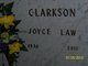 Sara Joyce <I>Law</I> Clarkson