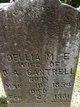 Profile photo:  Dellia M.E. Cantrell